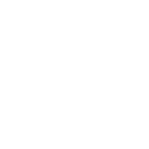 ASK Italian Icon