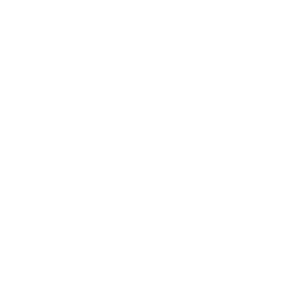 Beningbrough Hall Icon