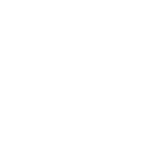 York Minster Icon